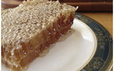 The love life of Honey B