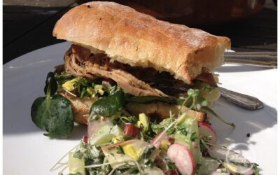 Slow roast shoulder of pork sandwich with rhubarb and radish salad