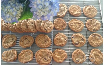 Recipe |  Chocolate Chip Cookies